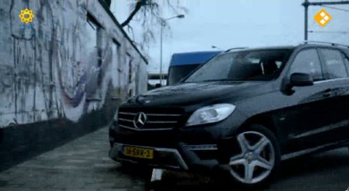 2012 Mercedes-Benz ML 250 BlueTEC 4Matic [W166]
