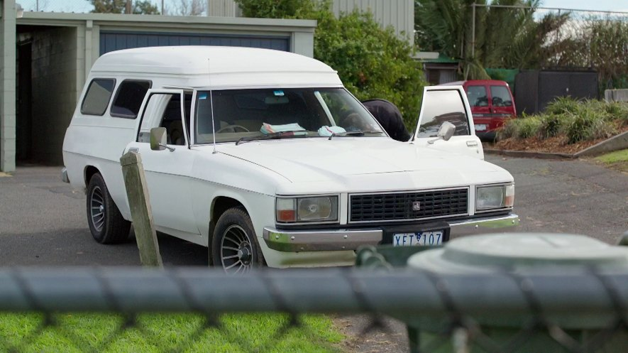 1984 Holden Panel Van [WB]